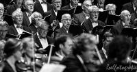 concert Vrie en Vrij Sittard-roelfotografie-396