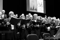 concert Vrie en Vrij Sittard-roelfotografie-73